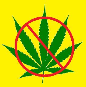 Say No to Weed